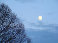 Moon rising, Brandywine, MD